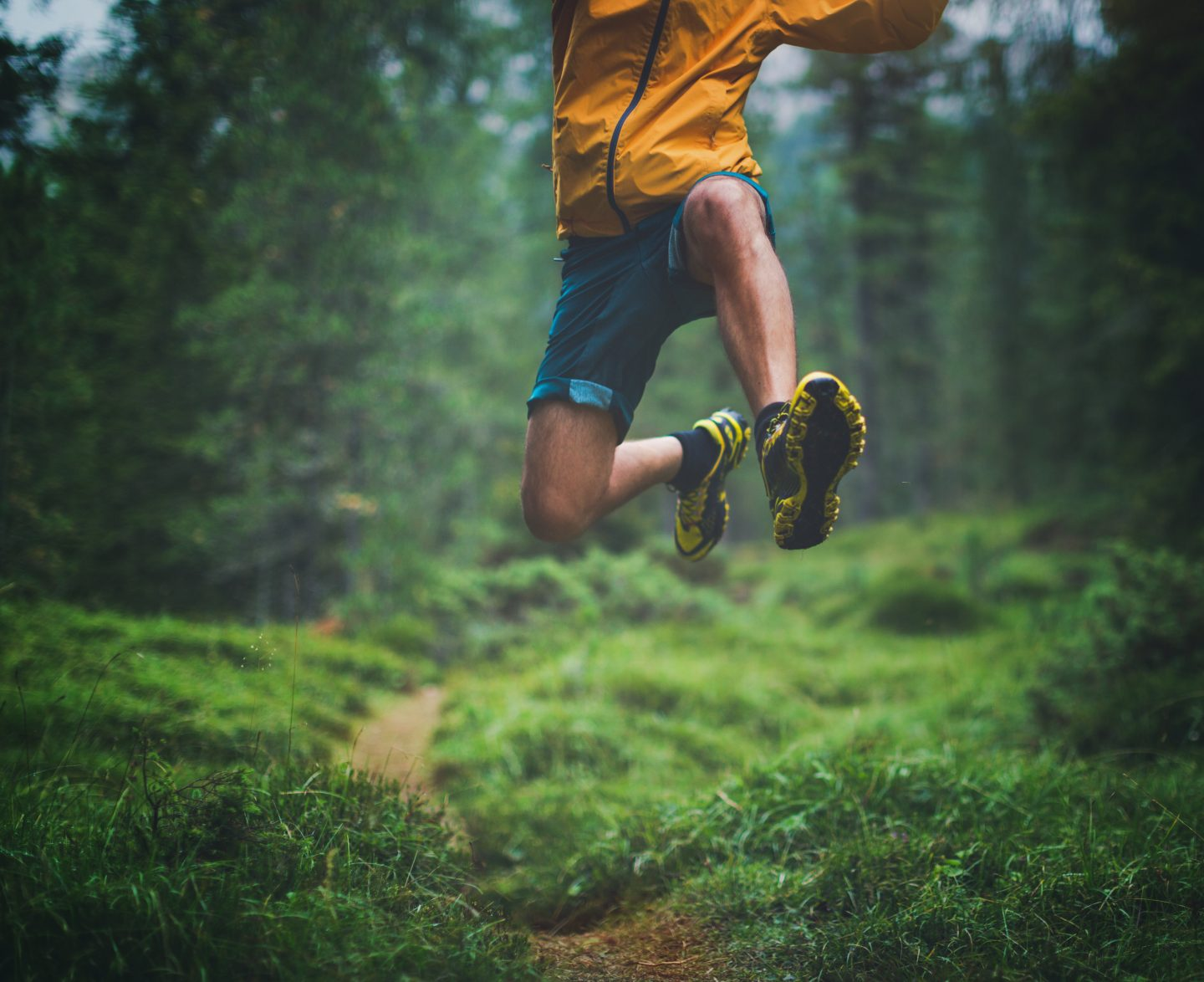 A man exercise trail running in a green and wet forest, jumping over tree roots. running, outdoors, freedom, trail running, health, fitness.