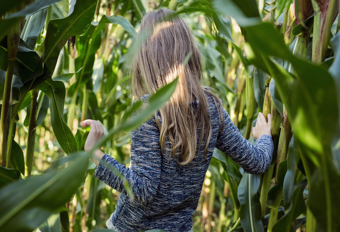 A young girl is going through a corn field. sustainability, employees, career advice, purpose, GamePlan A