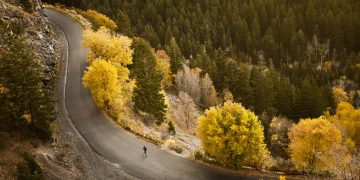 Woman running on empty road surrounded by autumn trees. mindfulness, grief, running, GamePlan A