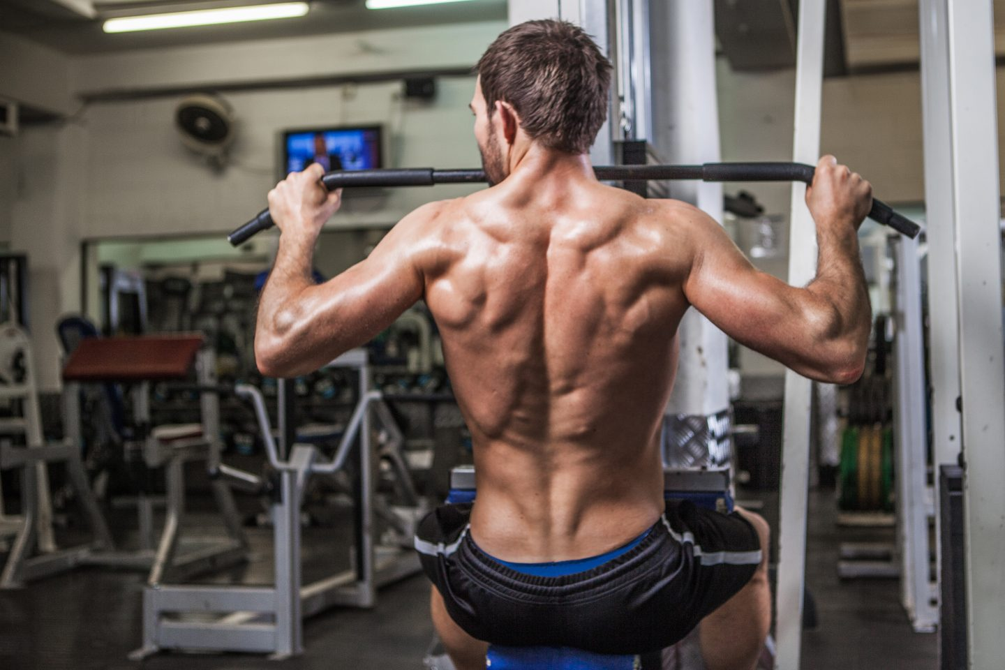Man working out in the gym. Muscles, back