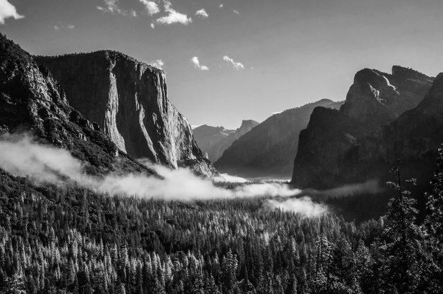 Yosemite National Park USA Black and white fog nature
