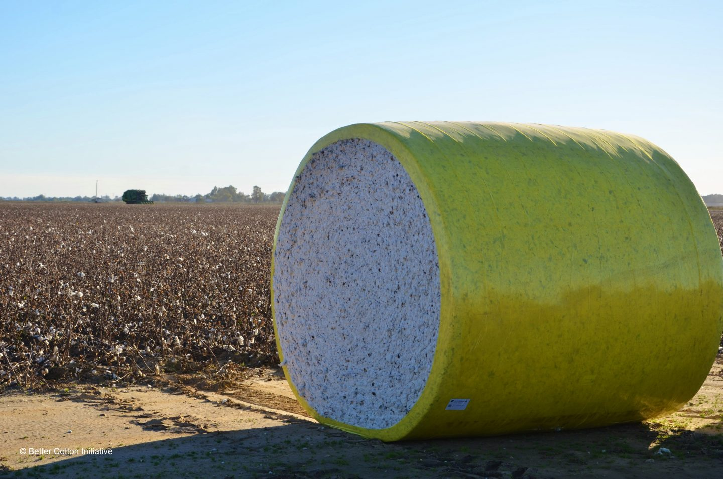 Cotton bale USA on the field wrapped in yellow foil