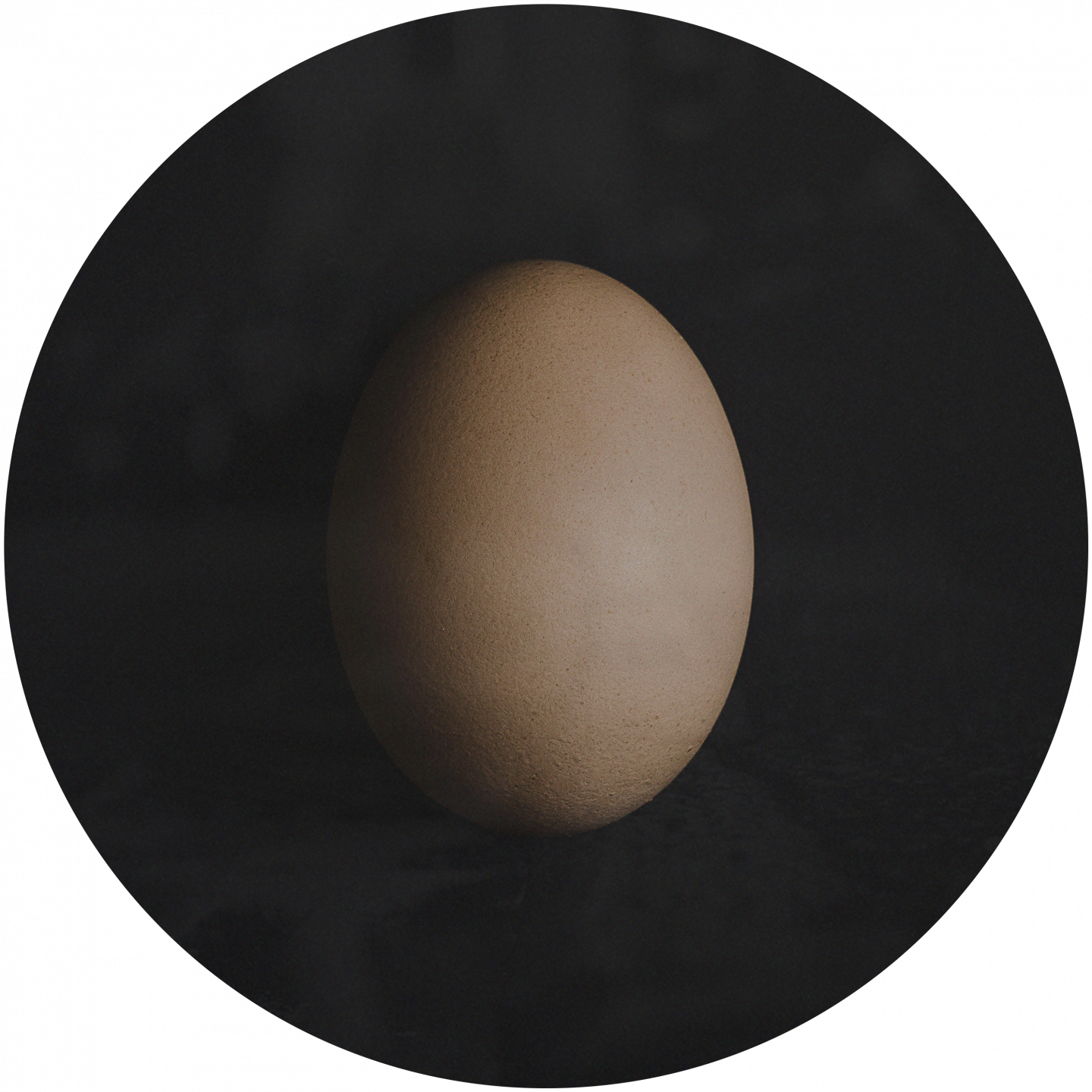 A brown egg in front of a black background. team building, team event, games, egg dropping, adidas, GamePlan A